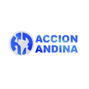 Acción Andina