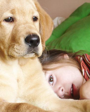 ¡Terapias Asistidas con animales en los colegios!
