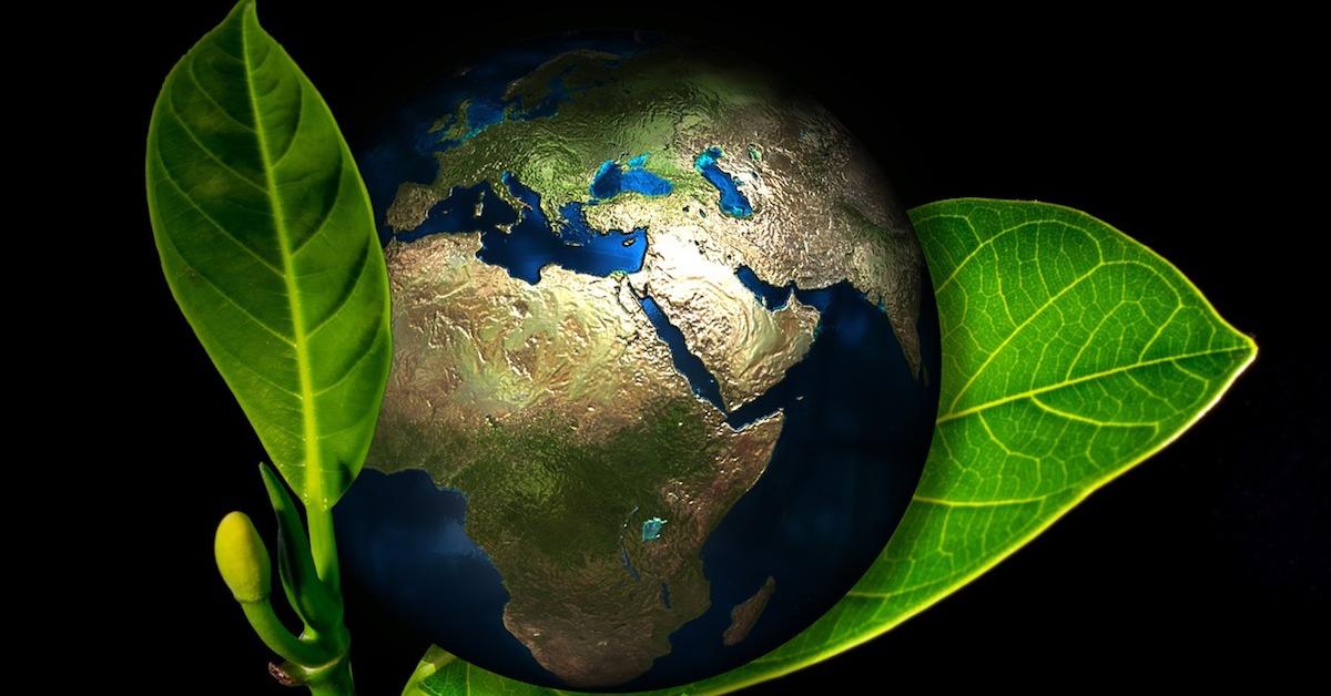 caritas campaña cuidar medio ambiente