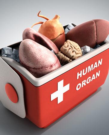 ¡Que la donación de órganos sea la norma, y no la excepción! ¡Firma!