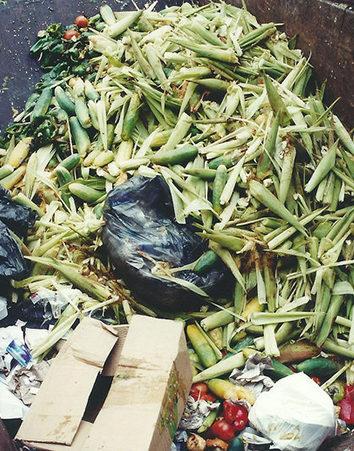 ¡¡Pongamos freno al desperdicio de alimentos!!