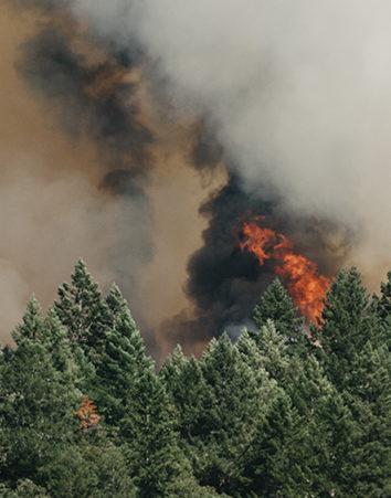 Firma para una mayor prevención de riesgo de incendios