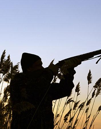 Firma para que no se utilicen aves en el tiro al pichón