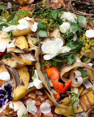 ¡Pongamos freno al desperdicio de alimentos!