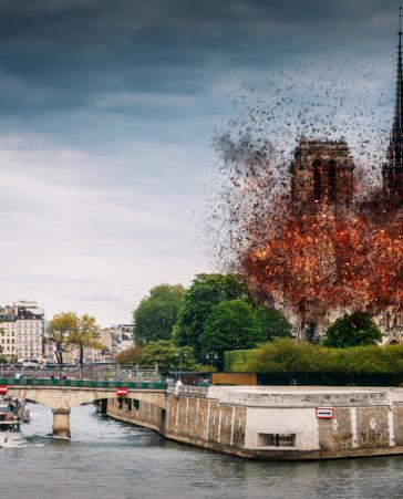 Firma para que parte de la recaudación de Notre Dame se destine a otras causas