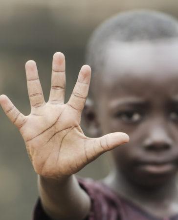 Firma para que se destine parte de la recaudación de Notre Dame a África