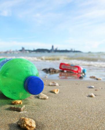 Firma para unas playas mas limpias en España