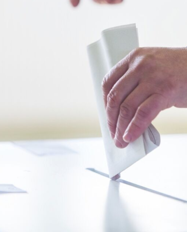 Firma para que no gasten más dinero ni papel en las elecciones